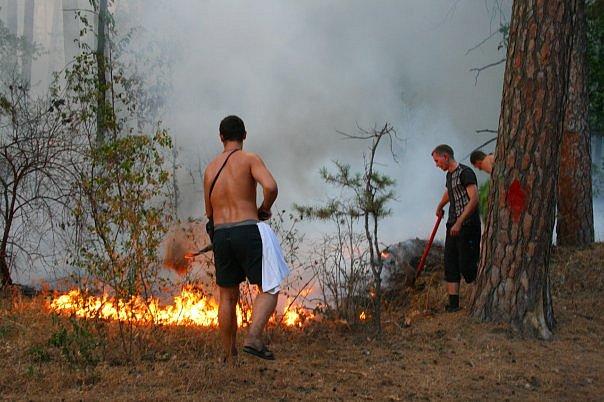 В Тольятти может наступить высший – пятый класс пожароопасности