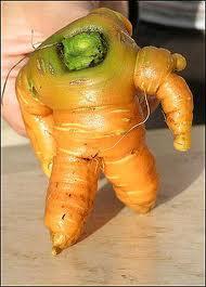 Россия запретила овощи из Германии и Испании.
